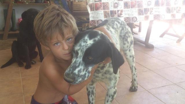 ANGELA / ANGY jolie croisée bodeguera, blanche mouchetée noir, 2 ans Dsc_1110