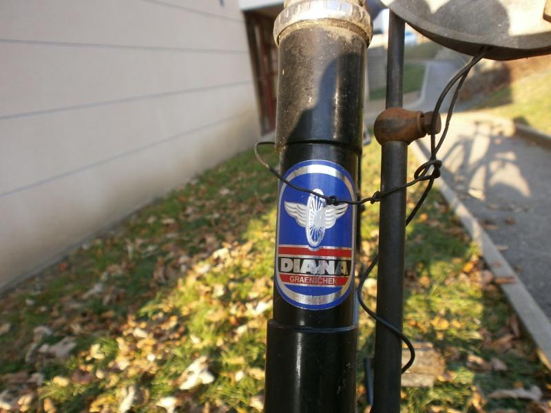 DIANA  vélo suisse Pc100111