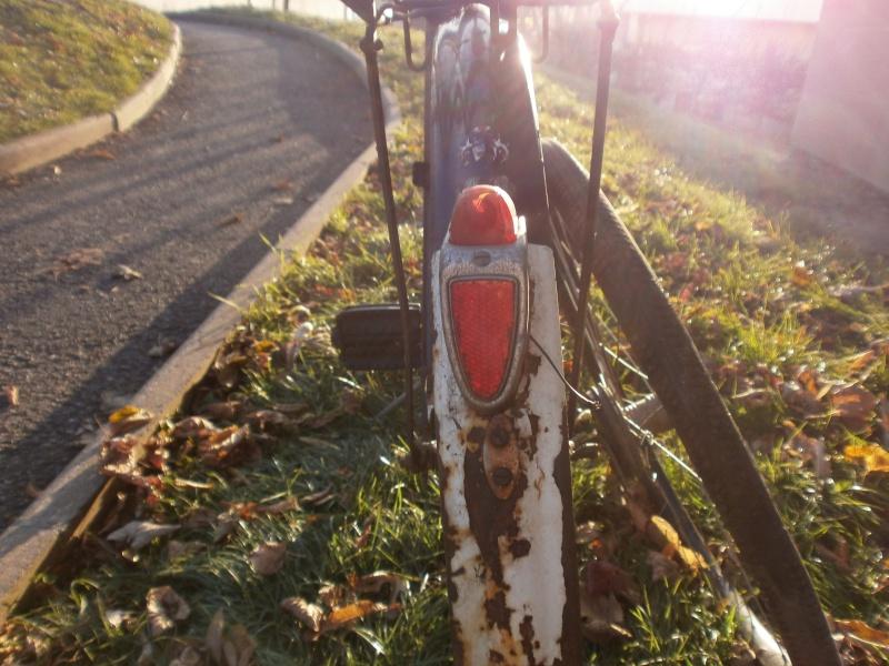 DIANA  vélo suisse Pc100112