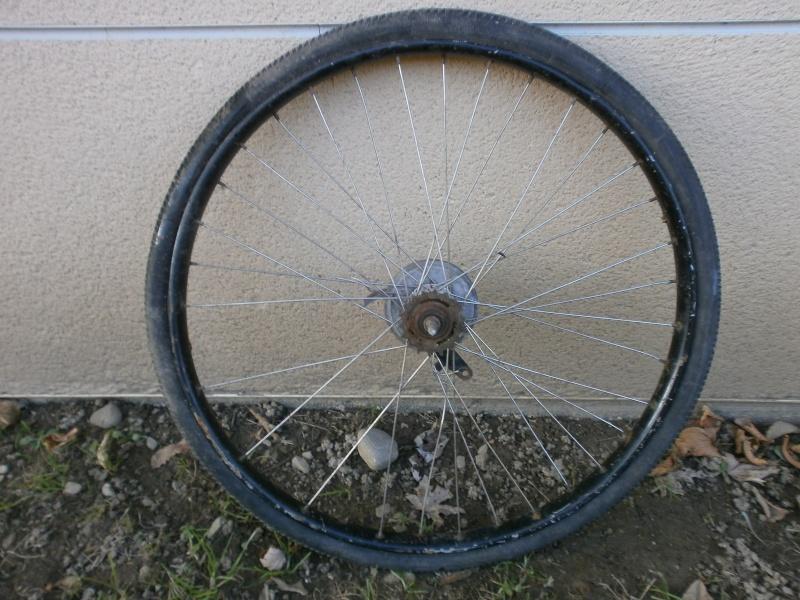 DIANA  vélo suisse Pc100114