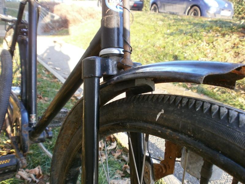 DIANA  vélo suisse Pc100115
