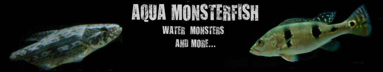 Καλώς ήρθατε στο Aqua Monsterfish