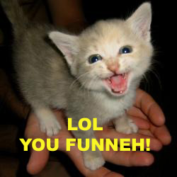 LOL Kitteh Funnyl10