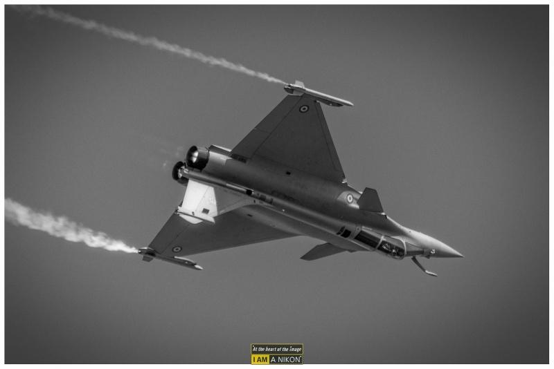 Rafale Air ( mono et biplace ) V80_9712