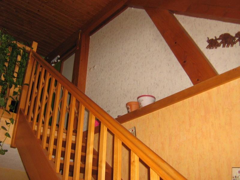 et vous!!!! vous choisiriez quelle couleur pour mon hall mezzanine ???? Hall_031