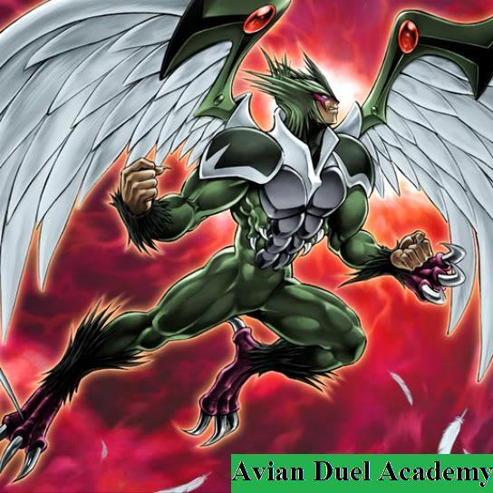 Avian Duel Academy