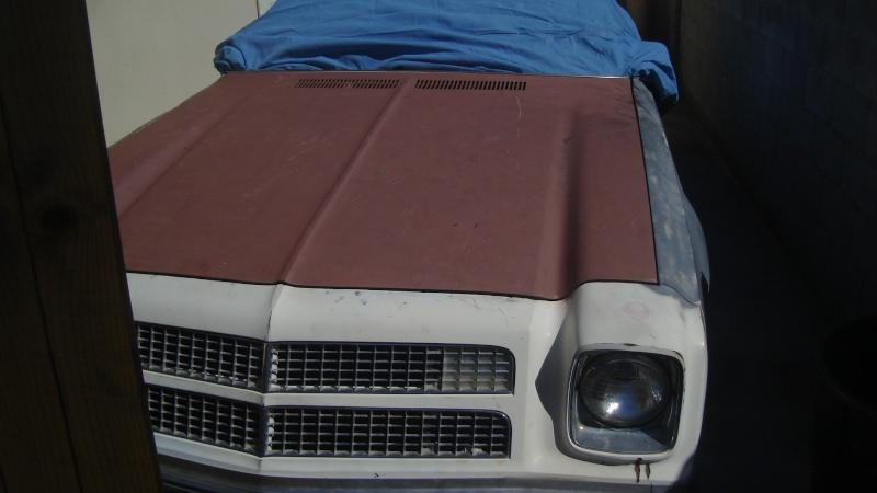My 76 Laguna S3 00113