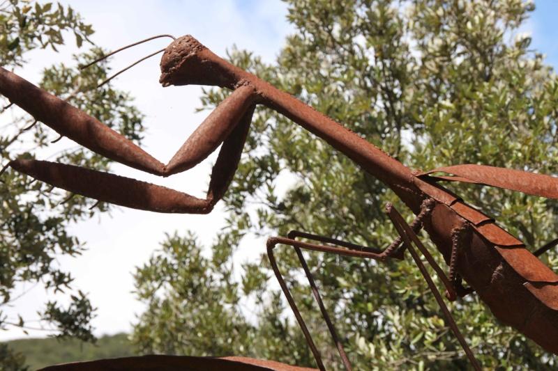 sentier sculpturel de Mayronnes (Aude) Img_9118