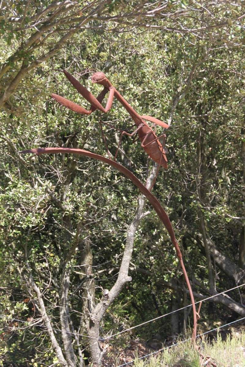 sentier sculpturel de Mayronnes (Aude) Img_9119