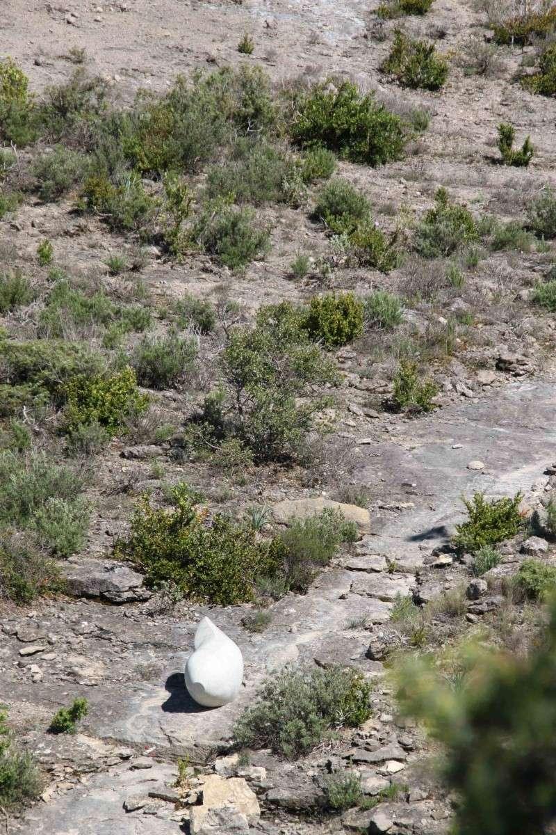 sentier sculpturel de Mayronnes (Aude) Img_9363