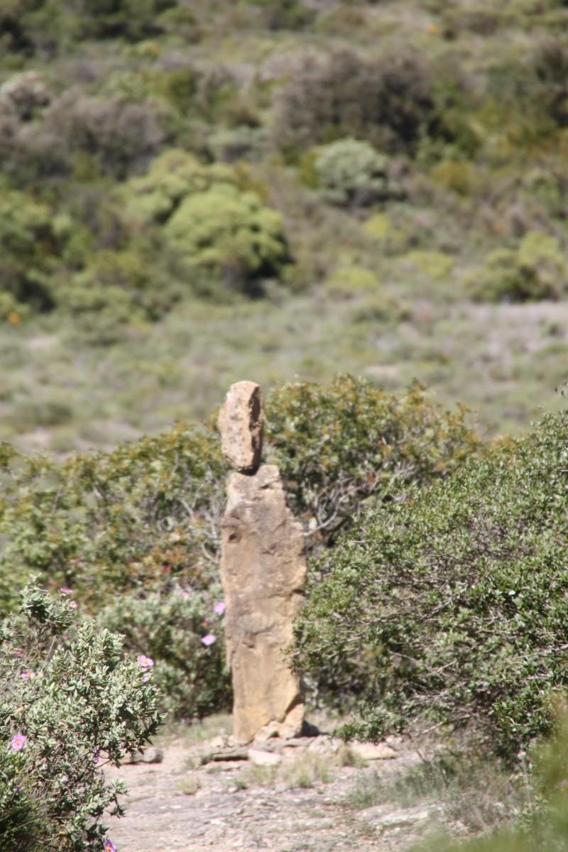 sentier sculpturel de Mayronnes (Aude) Img_9364