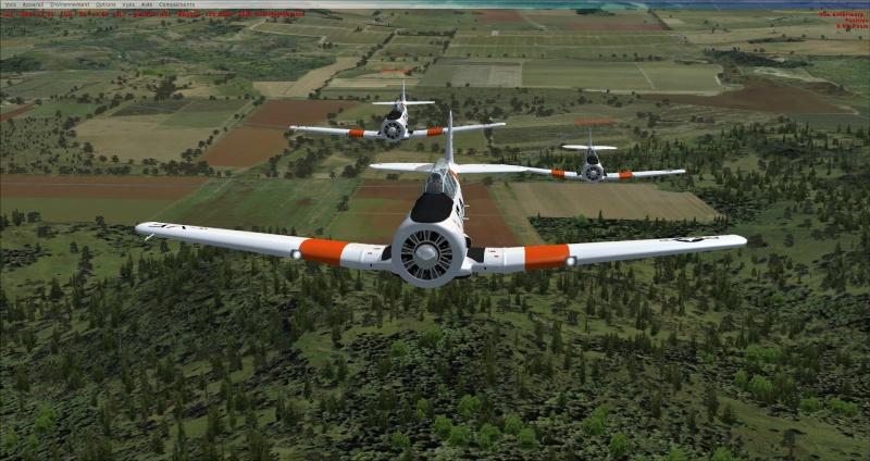 Vol en formation avec le texan 2014-319