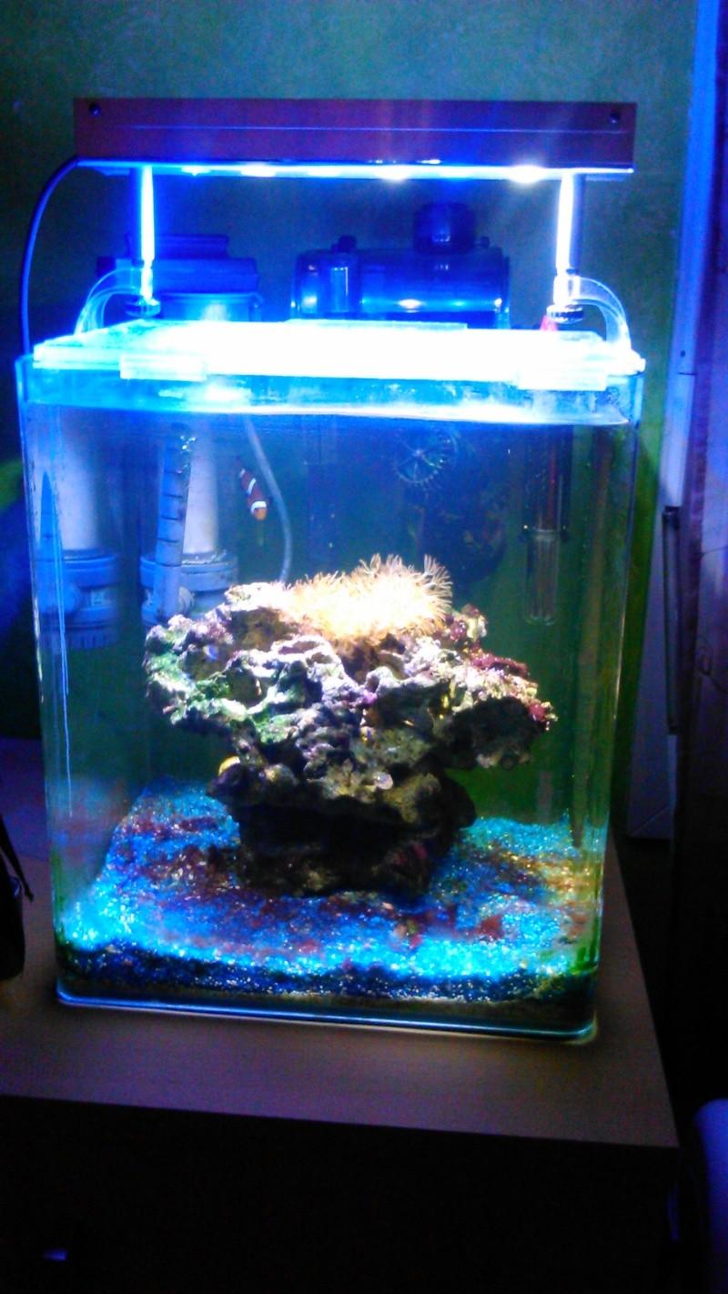 nano 30 litres Dsc_0016