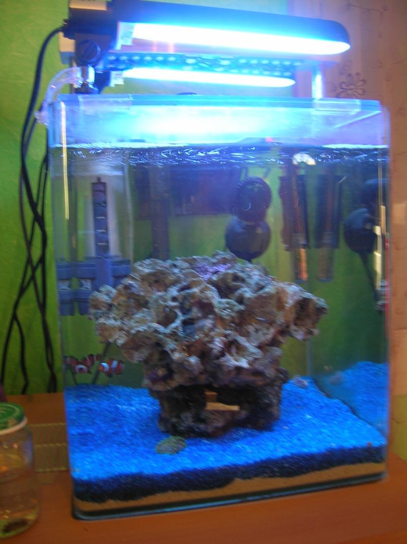 nano 30 litres Dscn3419