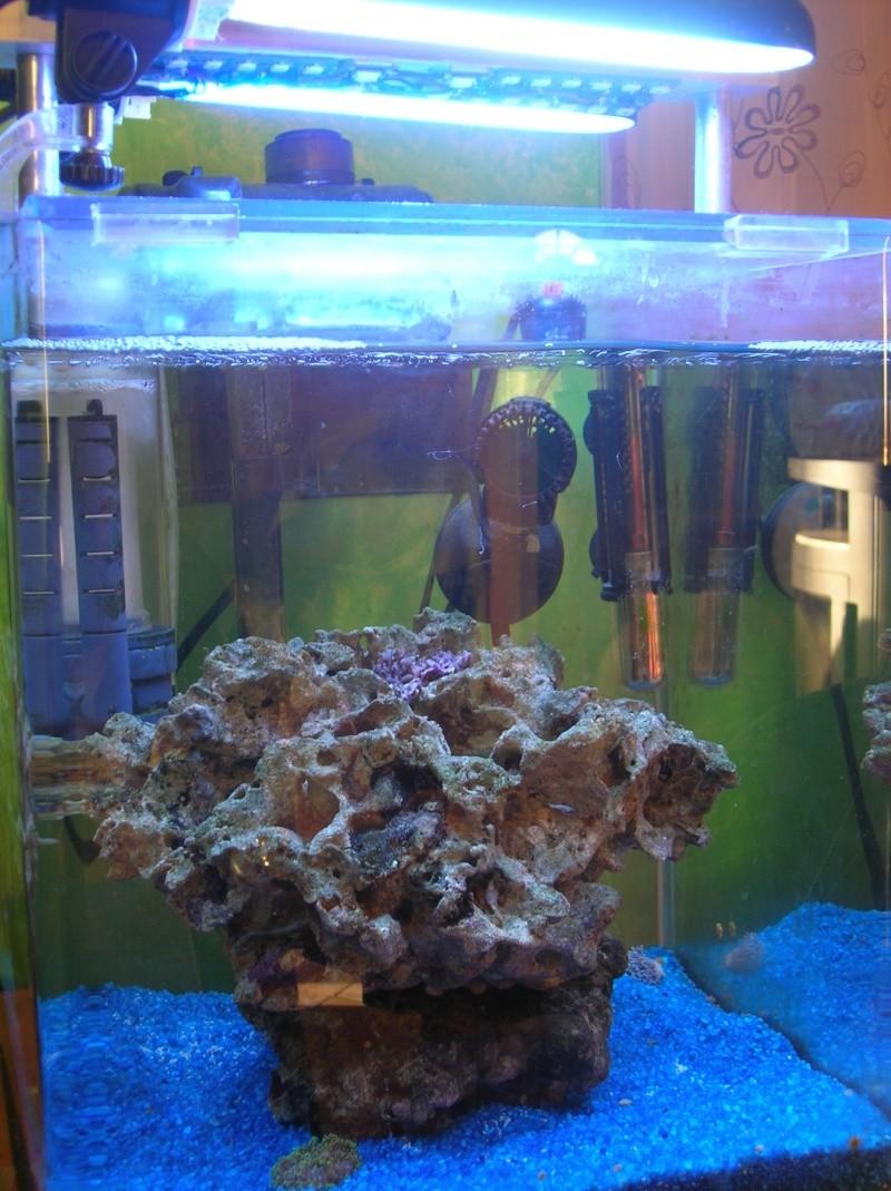 nano 30 litres Dscn3420