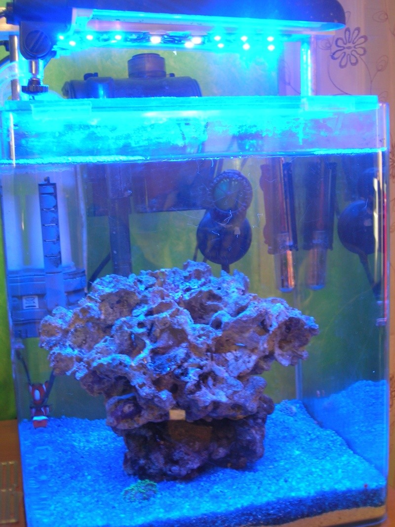 nano 30 litres Dscn3421