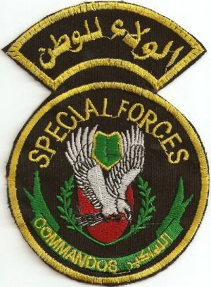 Special Forces and Commandos 2011-110