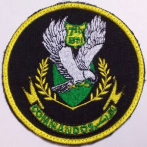 Special Forces and Commandos 7th_bn10