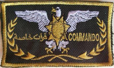 Special Forces and Commandos Sf_com10