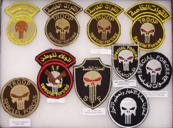 SWAT, Scorpion and Special Forces Patches Sf_dis11