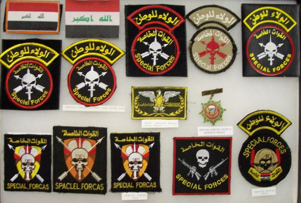 SWAT, Scorpion and Special Forces Patches Sf_dis12