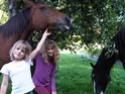 Thème de décembre : les chevaux et les enfants - Page 2 Carnag10