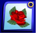 Rose Hair Clip Rose10
