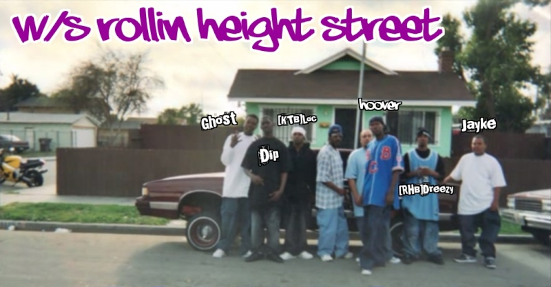 ★ Hoovers Rollin' Heightz Ballas Gang Application ★  - Page 2 N1b5js10