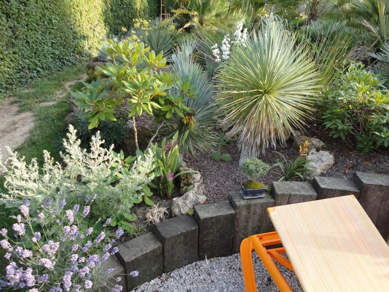 Petit jardin dans l'oise Dsc07010