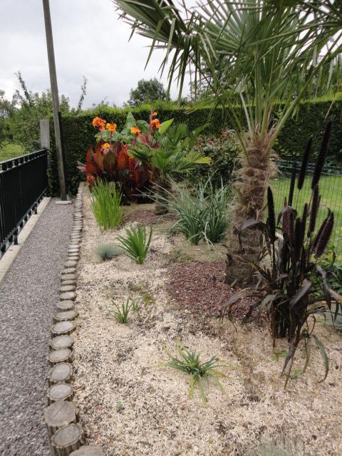 Petit jardin dans l'oise Dsc07311
