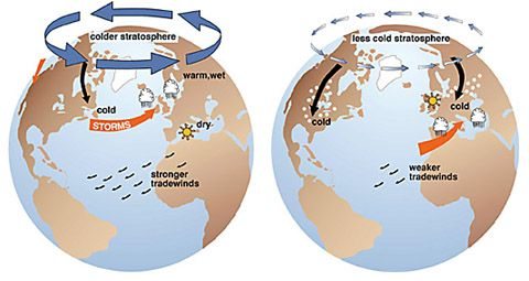The Arctic Oscillation, winter storms, and sea ice Arctic10