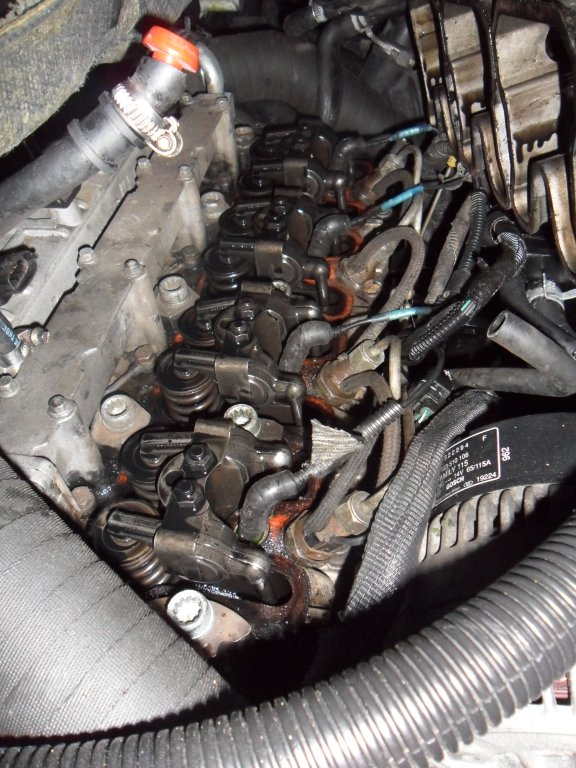 Bruit moteur au ralenti Sam_3221