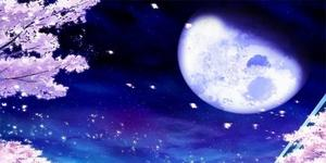 Moon Paradise