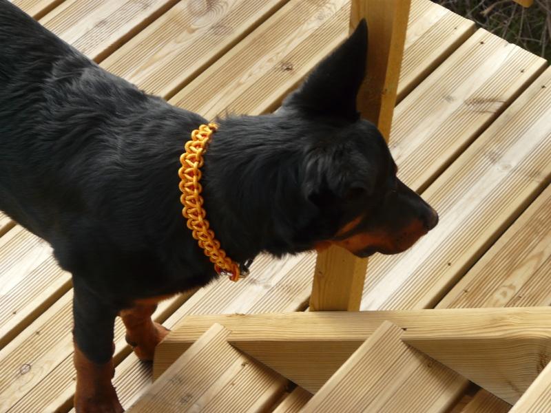 Fabriquer un collier en cordelette nouée (Paracorde) - Page 2 P1760511