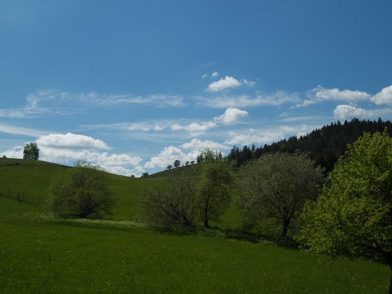 La vallée d'Orbey 17-05-10