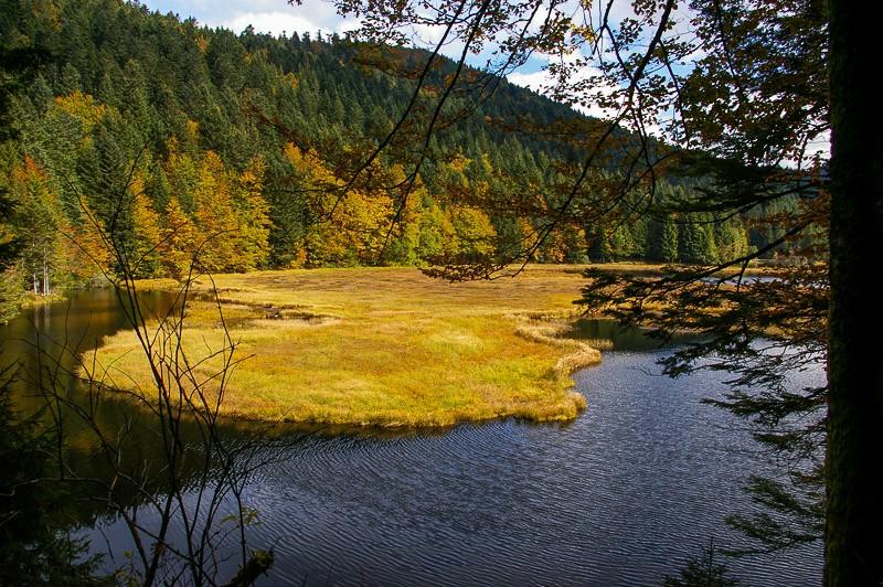 Le lac de Lispach Lac_de10