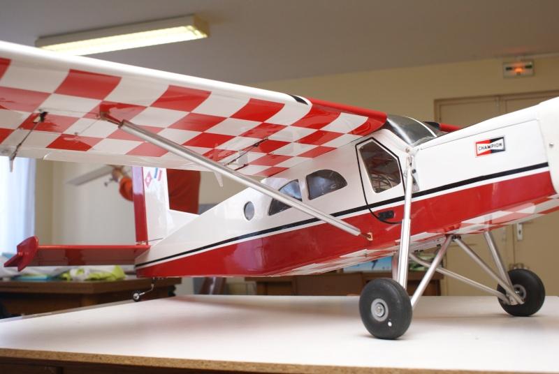 Quelques uns de mes avions  Dsc08110
