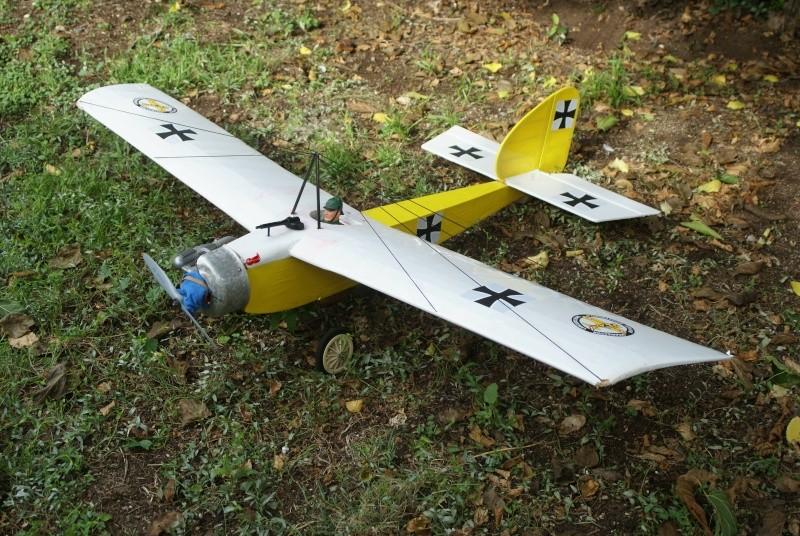 Quelques uns de mes avions  Dsc01413