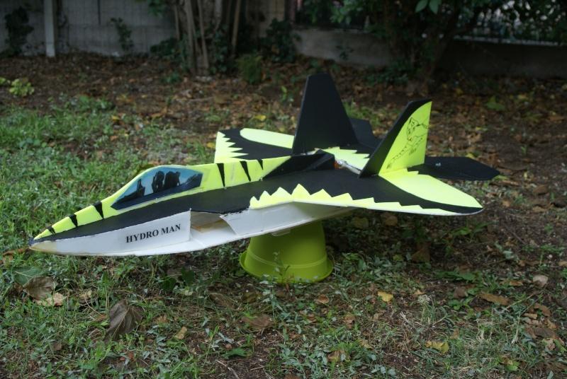Quelques uns de mes avions  Dsc01415
