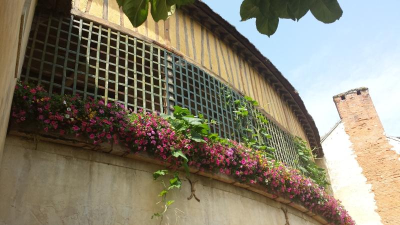 Nos photos du Hameau du Petit Trianon 20130718