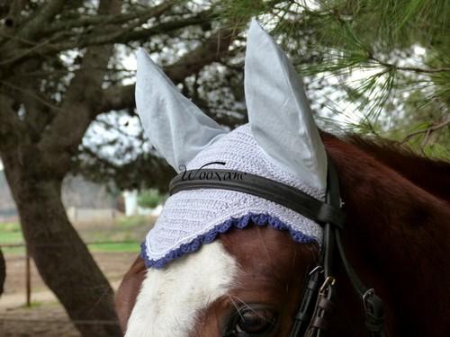 Bonnets Wooxane Wooxan11