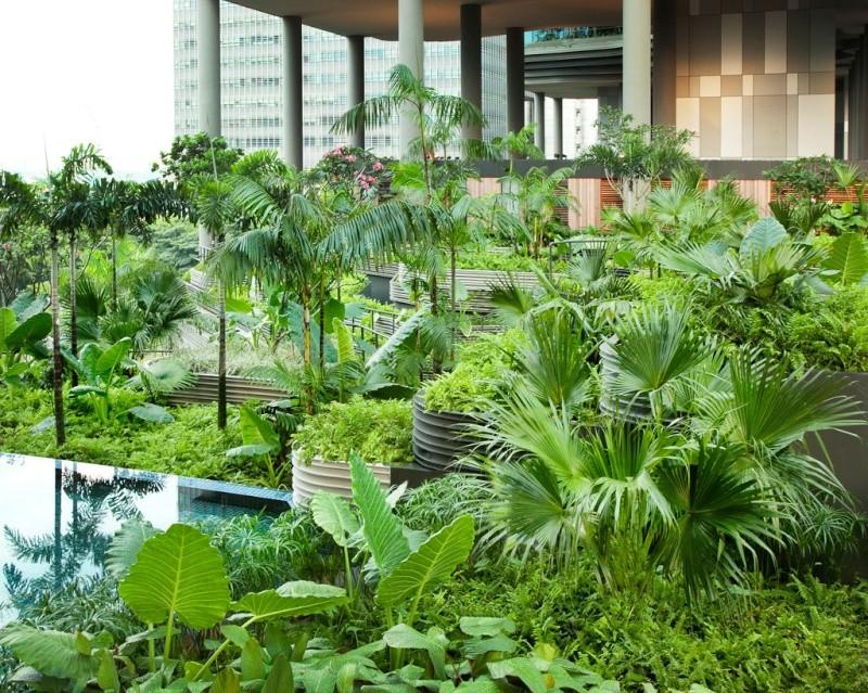Un Hôtel « Vert » Exceptionnel à Singapour 314