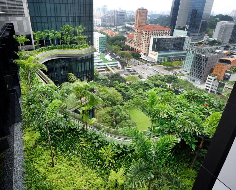Un Hôtel « Vert » Exceptionnel à Singapour 614
