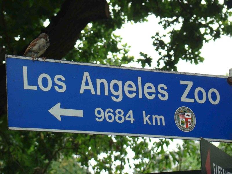 Les panneaux de signalisation les plus drôles du monde 616