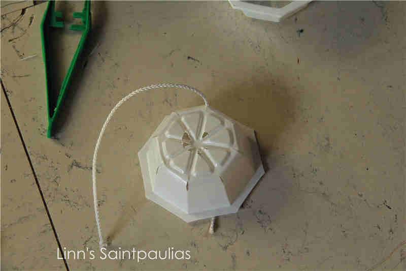 Arrosage automatique (paresseux) pour la culture de Saintpaulias (rampant) Img_3321