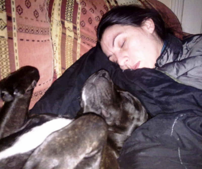 Well deserved nap with Judge 07112014