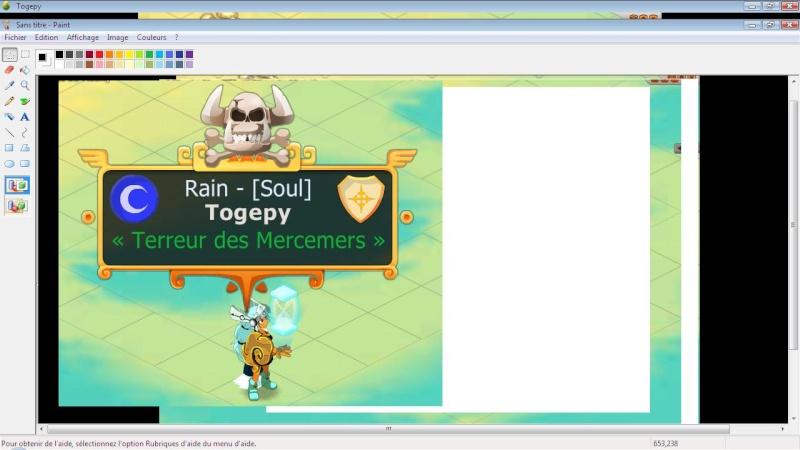 Candidature de Togepy Togepy13