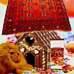 Vive les cabanes en chocolat ! Cabane10