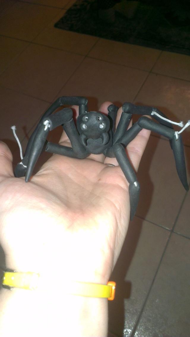 Eden petite araignée ^^ des news p3 Imag1923