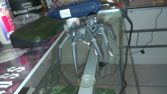 Eden petite araignée ^^ des news p3 Imag1927